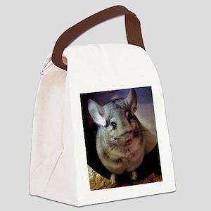 CJ on wheel - 10x10 Canvas Lunch Bag