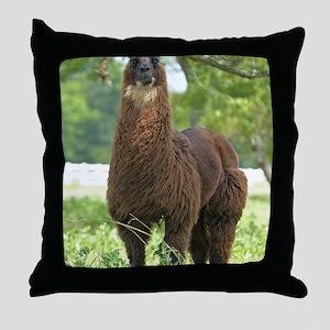 blk_llama_panel Throw Pillow