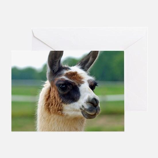 llama2_rnd Greeting Card