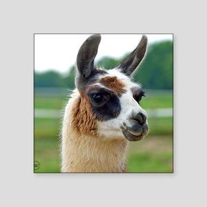"llama2_rnd Square Sticker 3"" x 3"""