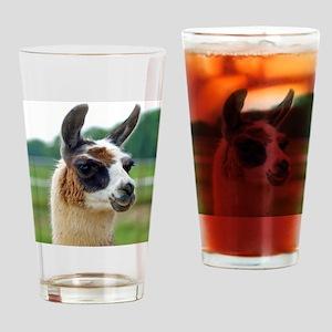 llama2_rnd Drinking Glass