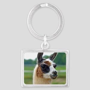 llama2_rnd Landscape Keychain