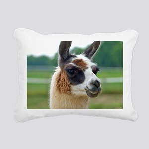 llama2_rnd Rectangular Canvas Pillow