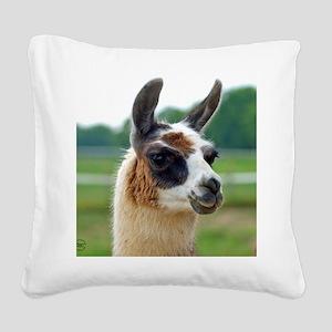 llama2_rnd Square Canvas Pillow