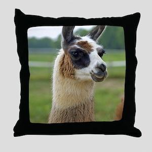 llama2_lgframe Throw Pillow