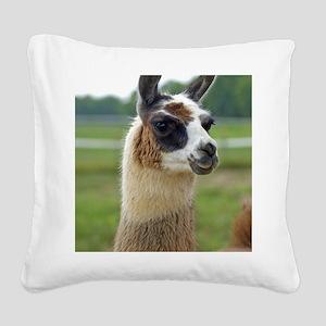 llama2_lgframe Square Canvas Pillow