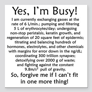 """busy Square Car Magnet 3"""" x 3"""""""
