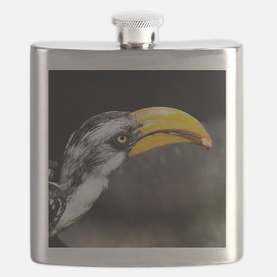 (15) Hornbill  Tidbit Flask
