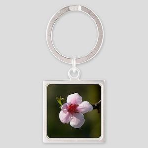 Cherry Blossom Photograph Square Keychain