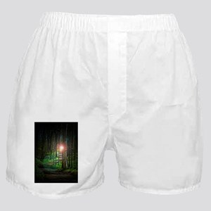 2009 path frame Boxer Shorts