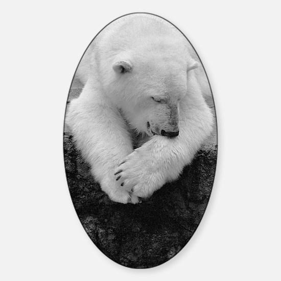 (13) Bear Bite Sticker (Oval)
