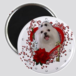 Valentine_Red_Rose_Maltese Magnet