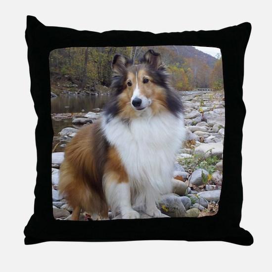 caleb creek Throw Pillow