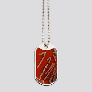 Bacteria are creatures too w 150 pt txt Dog Tags