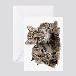 Clouded Leopard Cubs78 Greeting Card