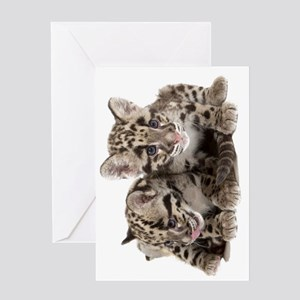 Clouded Leopard Cubs735 Greeting Card
