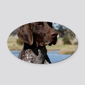 German Shorthaired Pointer 9Y832D- Oval Car Magnet
