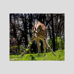 (14) Giraffe bowing Throw Blanket