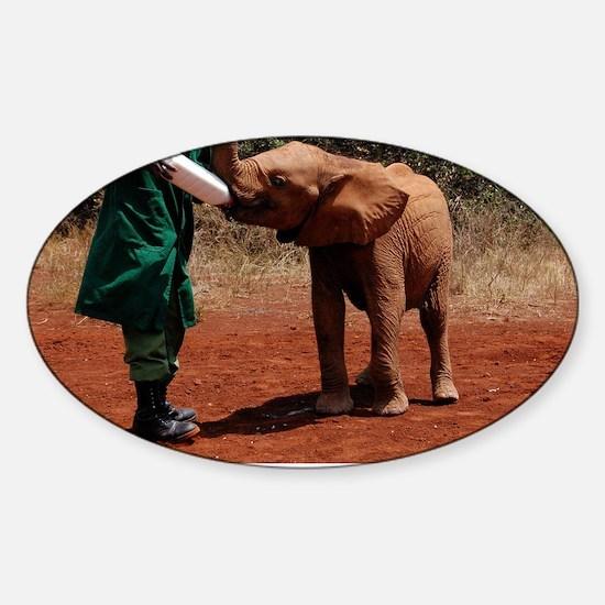 Baby Elephant Sticker (Oval)
