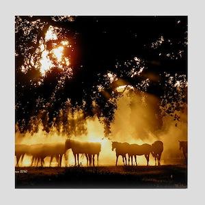 Field Horses signed. Oct. Winner Tile Coaster