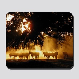 Field Horses signed. Oct. Winner Mousepad