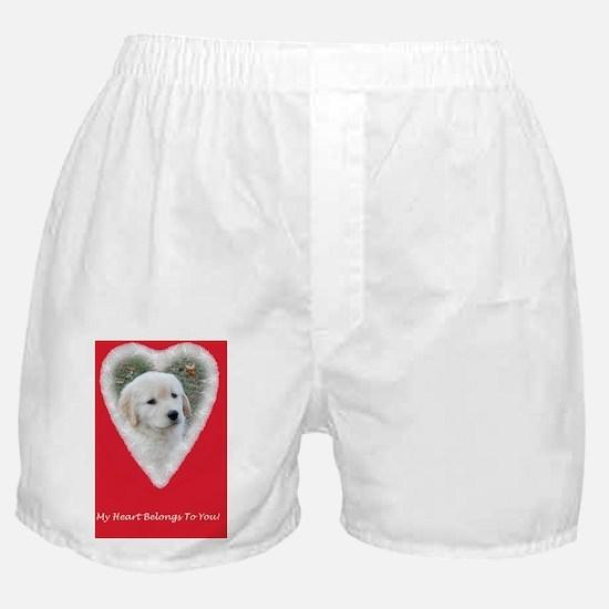 Golden Retriever Puppy Funny Valentin Boxer Shorts
