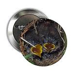 """Birds 2.25"""" Button (100 pack)"""