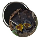 "Birds 2.25"" Magnet (100 pack)"