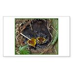 Birds Rectangle Sticker