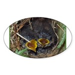Birds Oval Sticker