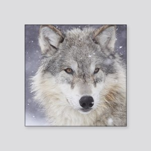 "ms  Wolf Square Sticker 3"" x 3"""