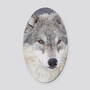 ms  Wolf Oval Car Magnet