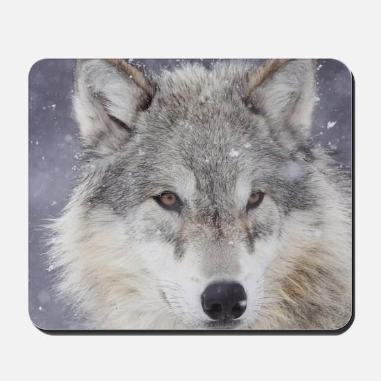 x10  Wolf Mousepad