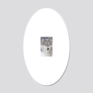 x14  Wolf 20x12 Oval Wall Decal