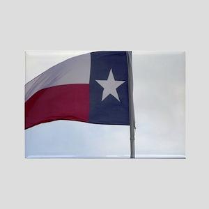 texas.pride.flag.WE_THOMAS Rectangle Magnet