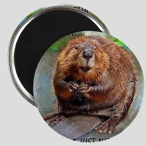 Beaver cp Magnet