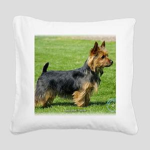 Australian Terrier 9R044D-62 Square Canvas Pillow