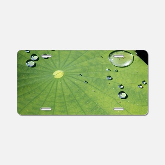 Dew on a Lilypad Aluminum License Plate
