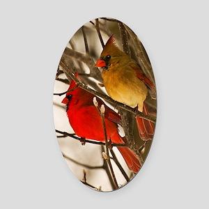 cardinals2poster Oval Car Magnet