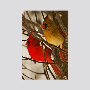 cardinals2poster Rectangle Magnet