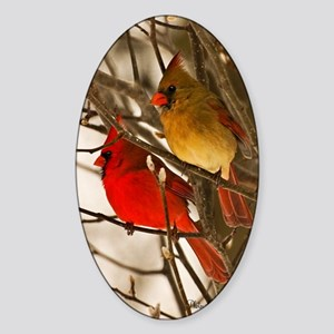 cardinals2poster Sticker (Oval)