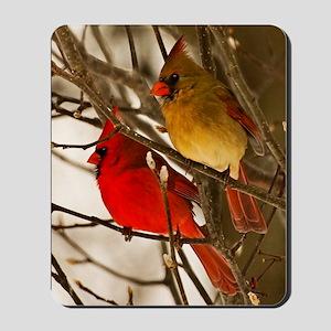 cardinals2poster Mousepad