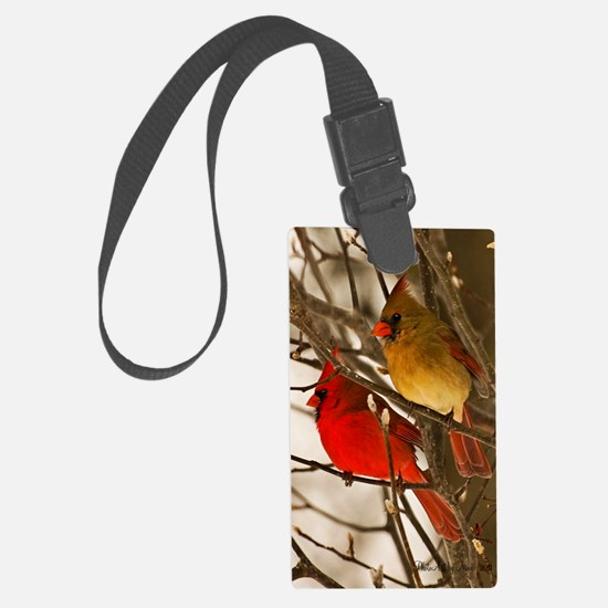 cardinals2poster Luggage Tag