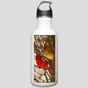 cardinals2poster Stainless Water Bottle 1.0L