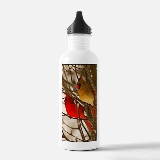 cardinals2poster Water Bottle