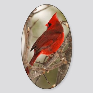 cardinal1pster Sticker (Oval)