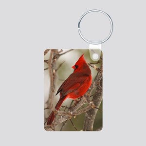 cardinal1pster Aluminum Photo Keychain