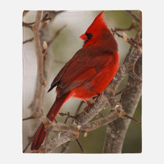 cardinal1pster Throw Blanket