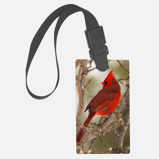 cardinal1pster Luggage Tag