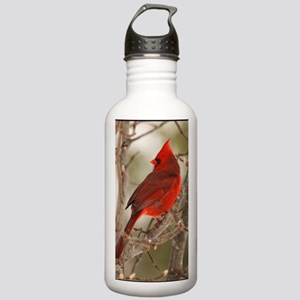 cardinal1pster Stainless Water Bottle 1.0L